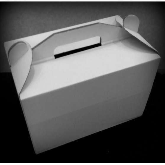 Коробка для Кейк-попсов 242х145х175